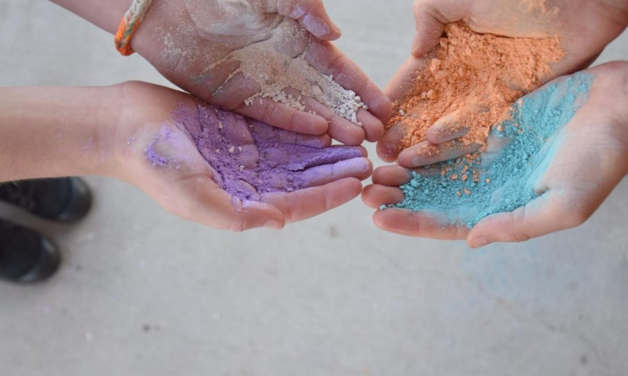 Welcoming Spring With the Holi Festival