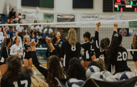 Volleyball Is On the Rise