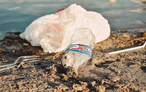 Opinion – Seeing Through The Plastic