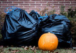 Annual Physics Pumpkin Drop is a Smash